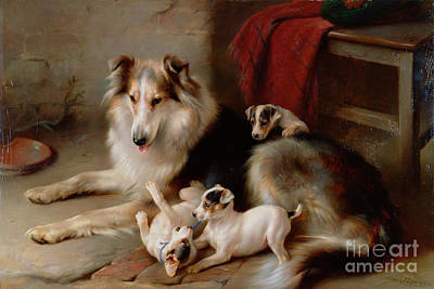 A Collie With Fox Terrier Puppies Art Print by Walter Hunt