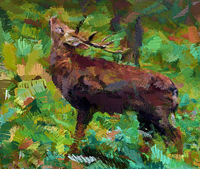 House Pet Digital Art - A Deer by Yury Malkov