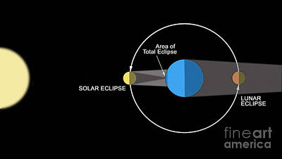 Solar Eclipse Digital Art - A Diagram Illustrating How Eclipses by Ron Miller