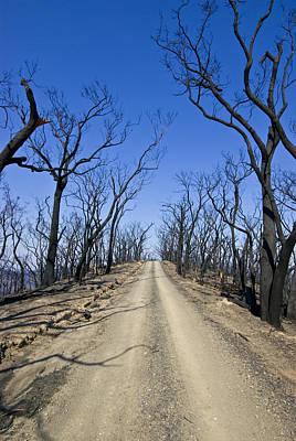 High Park Wildfire Photograph - A Dirt Road Runs Along A Mountain Top by Jason Edwards