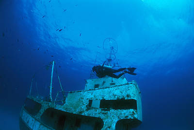 A Diver Exploring A Shipwreck With Fish Art Print by Nick Caloyianis