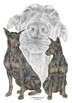Pinscher Drawing - A Doberman Knows - Dobe Pinscher Dog Art Print by Kelli Swan