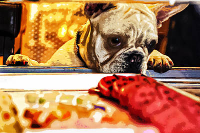 French Bull Dog Wall Art - Digital Art - A Dog And His Cookies by Susan Stone