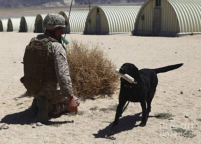 Photograph - A Dog Handler Calls Over A Black by Stocktrek Images