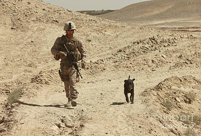 Photograph - A Dog Handler Walks With An Explosives by Stocktrek Images