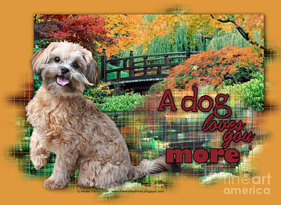 A Dog Loves You More - Shihpoo Art Print by Renae Laughner