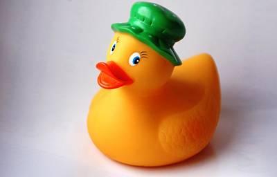 A Duck With Green Hat Art Print by Juan  Cruz