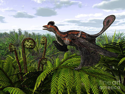 Dromaeosaurid Digital Art - A Feathered Microraptor Perched Atop by Walter Myers