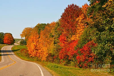 Photograph - A Fine Fall Day by Joan McArthur