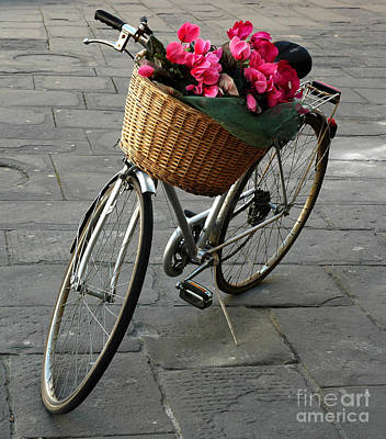 Art Print featuring the photograph A Flower Delivery by Vivian Christopher