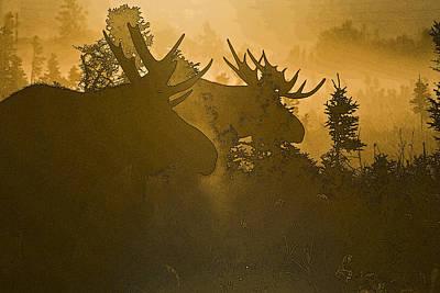 Sun Set Art Digital Art - A Foggy Morning- Abstract by Tim Grams