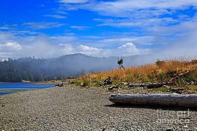 Driftwood Beach Fog Wall Art - Photograph - A Foggy Morning At Whiffin Spit by Louise Heusinkveld