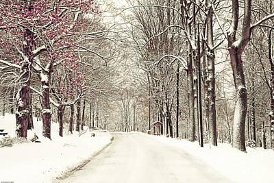 A Fresh Snow Storm Original