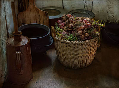 Photograph - A Full Basket by Robin-Lee Vieira