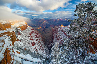 South Kaibab Photograph - A Grand Dawn by Guy Schmickle