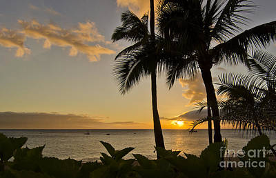 Photograph - A Hawaiian Sunset by MaryJane Armstrong