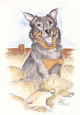 Kelpie Drawing - A Job Well Done by Amanda Robbemond