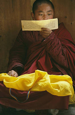 A Lama Studies Tibetan Scripture Art Print by David Edwards