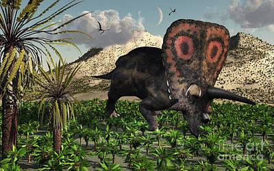 A Lone Torosaurus Dinosaur Feeding Print by Mark Stevenson