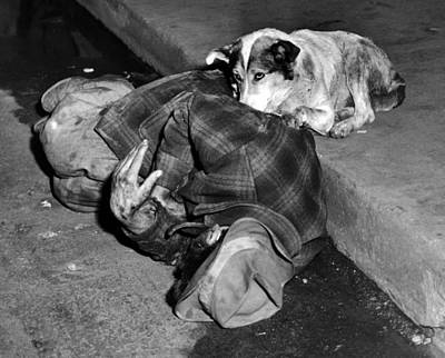 Homeless Pets Photograph - A Loyal Chicago Dog Named Queenie by Everett