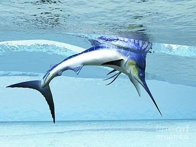 A Marlin Dives In Shallow Waves Looking Art Print by Corey Ford