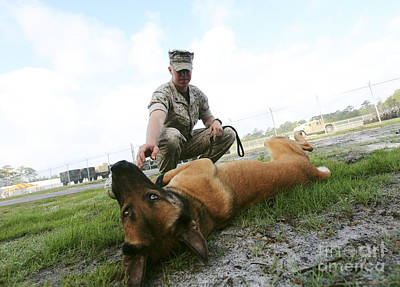 Photograph - A Military Working Dog Handler Takes by Stocktrek Images