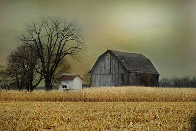 Art Print featuring the photograph A New Dawn by Mary Timman