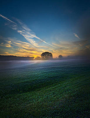 Autumn Leaf Photograph - A New Day by Phil Koch