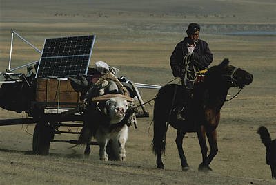 Solar Panels Etc Photograph - A Nomadic Herder Pulls The Communitys by Gordon Wiltsie