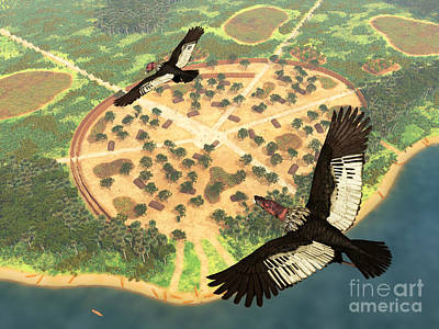 Condor Digital Art - A Pair Of Andean Condors Fly Over An by Walter Myers