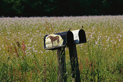 A Pair Of Mailboxes Set On The Edge Art Print