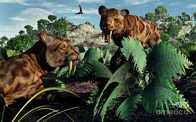 A Pair Of Sabre-toothed Tigers Art Print by Mark Stevenson
