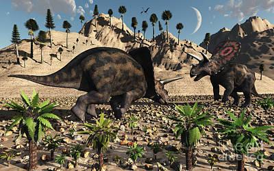 A Pair Of Torosaurus Dinosaurs Fight Art Print by Mark Stevenson