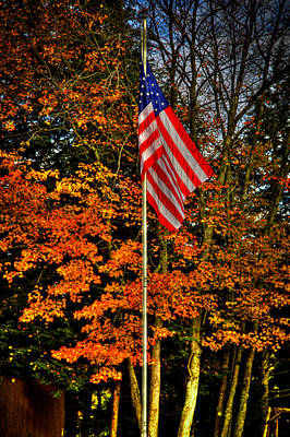 American Flag Photograph - A Patriotic Autumn by David Patterson