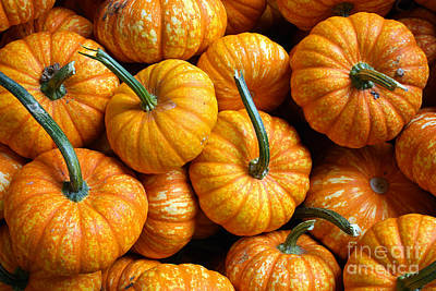 A Peck Of Pumpkins Art Print by Kami McKeon