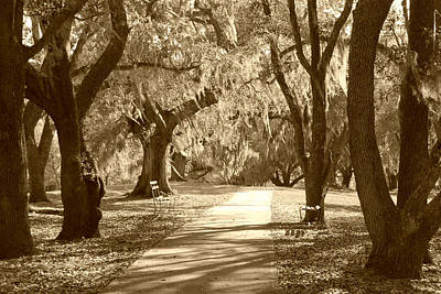 Photograph - A Place For Contemplation In Sepia by Suzanne Gaff