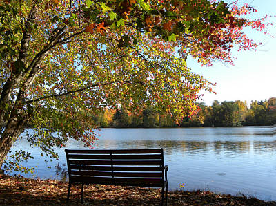 A Place For Thanks Giving Art Print by Sandi OReilly