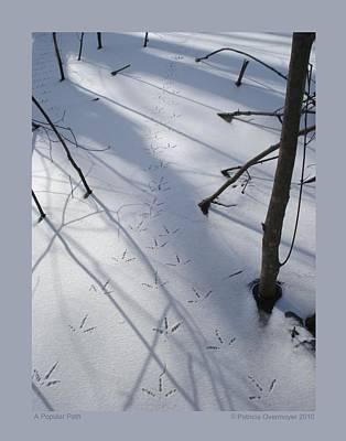 A Popular Path Art Print