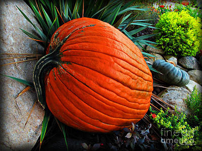 Photograph - A Pumpkin Break by Joan  Minchak