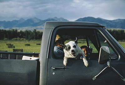 A Ranchers Dog Snarls Art Print