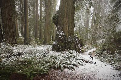 A Rare Snow Dusts The Trail Through Del Art Print