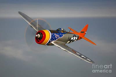 Photograph - A Republic P-47d Thunderbolt In Flight by Scott Germain