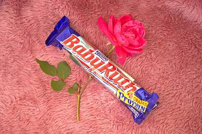 Photograph - A Rose And A Babyruth by Tom Zukauskas