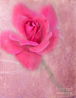 Floral Digital Art Digital Art Digital Art - A Rose By Any Other Name by Betty LaRue