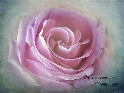 Photograph - A Rose In The Heart Of Rose by Fiona Messenger
