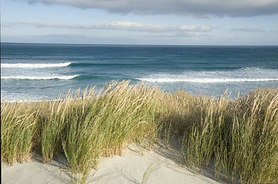 Aotearoa Photograph - A Scenic Hillside Of The Beach by Bill Hatcher