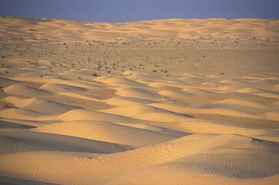 A Sea Of Dunes In The Sahara Desert Art Print by Stephen Sharnoff