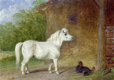 Shetland Ponies Painting - A Shetland Pony And A King Charles Spaniel by Martin Theodore Ward
