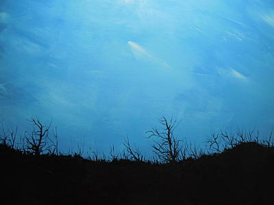 Painting - A Shooting Star In An Azure Sky by Dan Whittemore