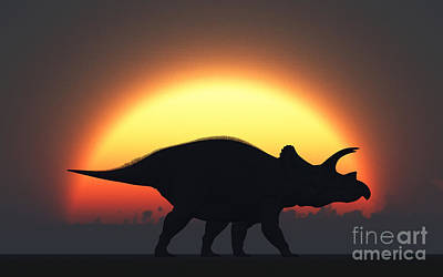 A Silhouetted Triceratops Strolling Print by Mark Stevenson